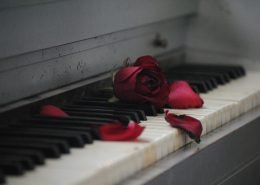 Piano mit Rose