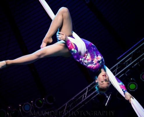 Aerial Silk Shows buchen